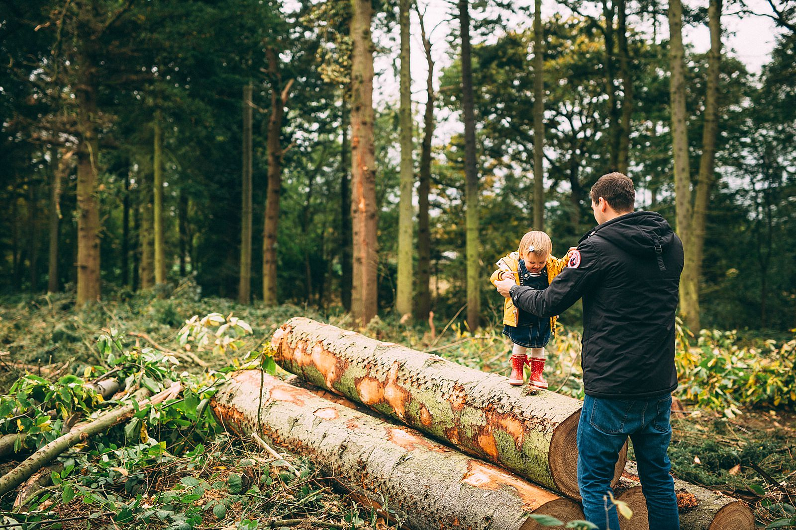 little girl standing on wooden log holding hand with dad