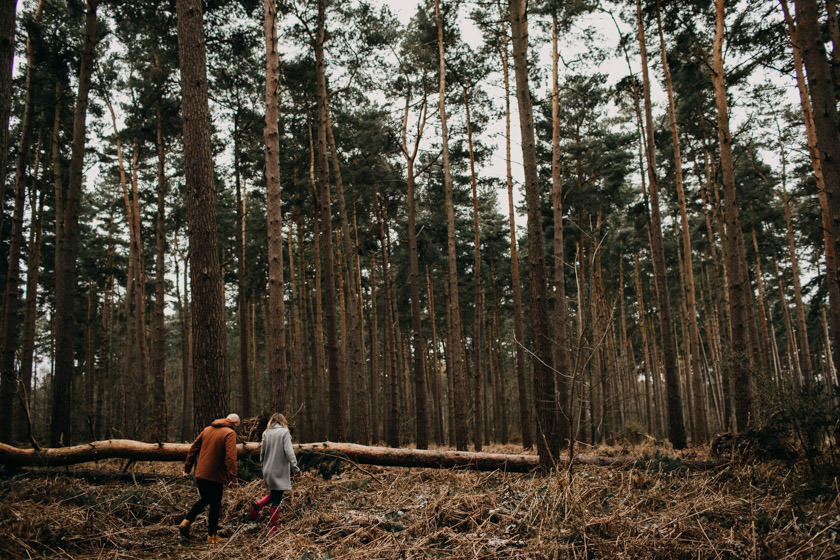girl and boy walking in the forest towards wooden log