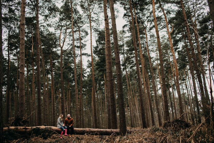 big forest little people sitting on a wooden log